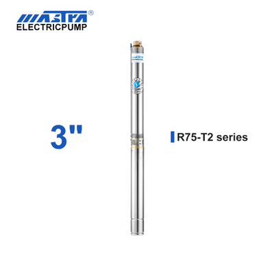 60Hz Mastra 3 inch Submersible Pump - R75-T2 series 2 m³/h rated flow 3 hp irrigation pump