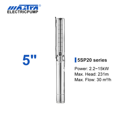 Mastra 5 inch stainless steel submersible pump - 5SP series 20 m³/h rated flow irrigation pump electrical requirements
